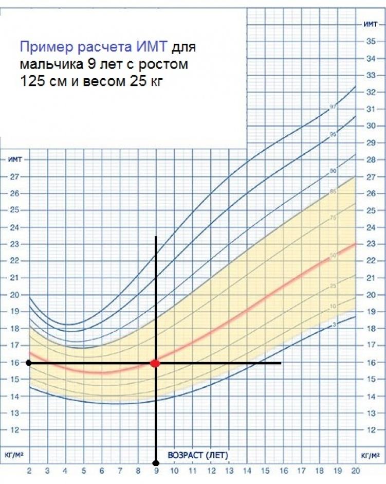 grafik_1_primer_rascheta_imt_dlya_malychika__9_let_751x941