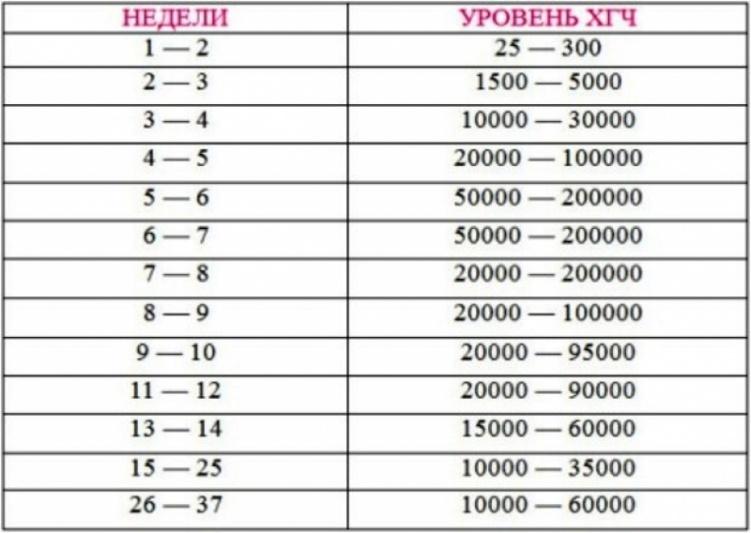 pozitivnyiy_ili_negativnyiy_kak_uznaty_rezulytat_751x533