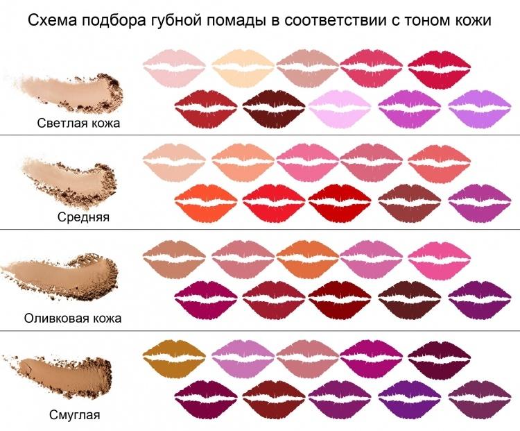 shema_pomadyi_750x621