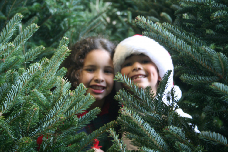 new_year_wallpapers_children_at_the_christmas_tree_2014_050910__751x501