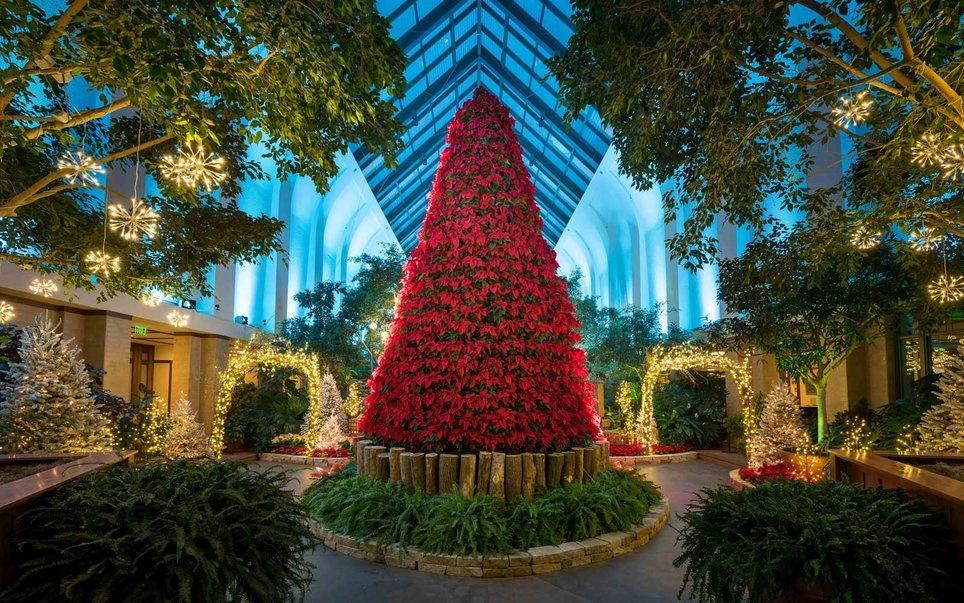 poinsettia-christmas-tree-omaha-tree1216