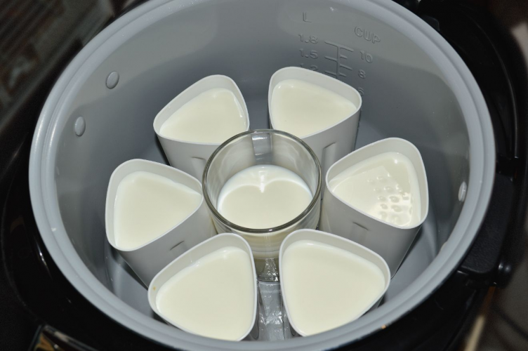 yogurt2_752x500