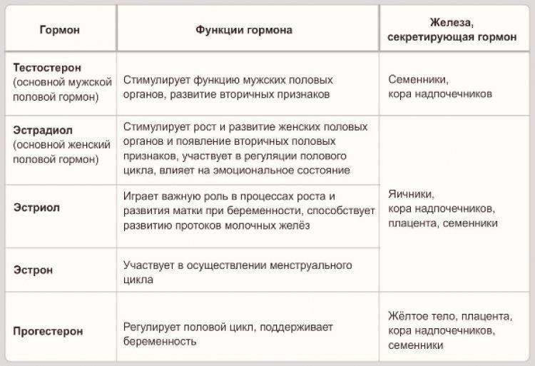 gormonyi_foto1_750x513