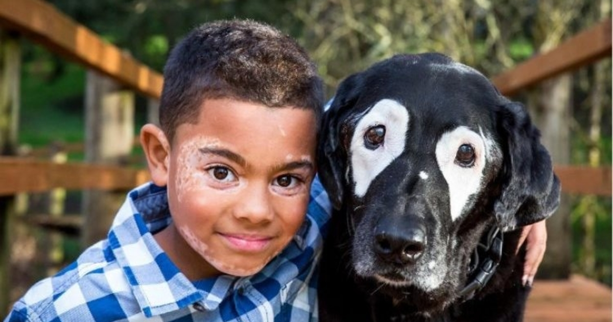 ребенок собака болезнь