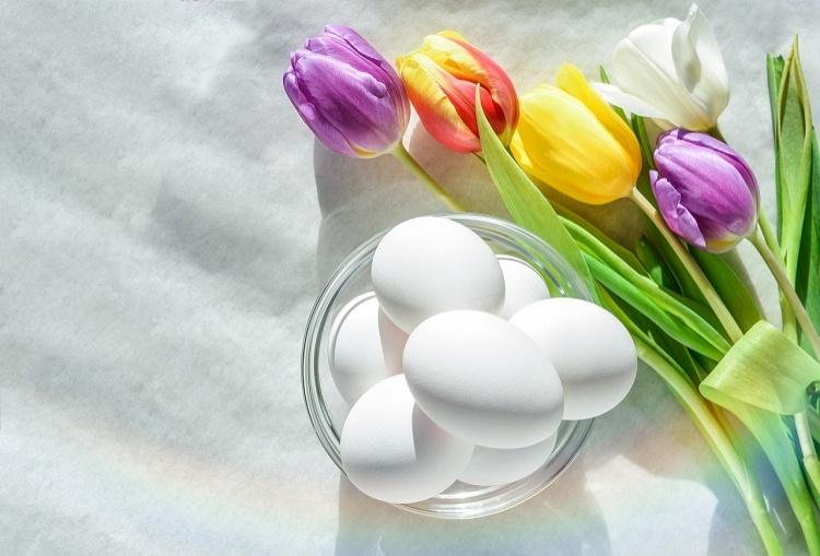 flower-3223044_1280