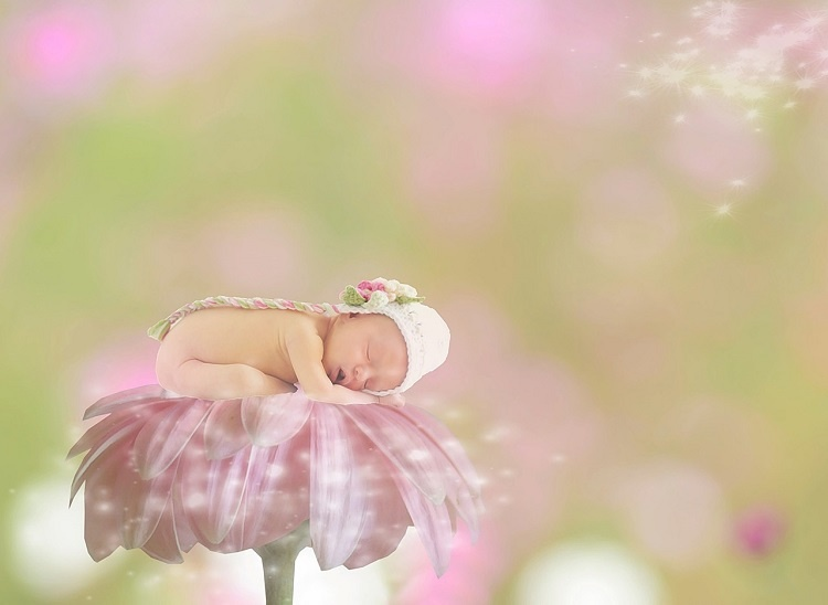 baby-1953385_1280_02