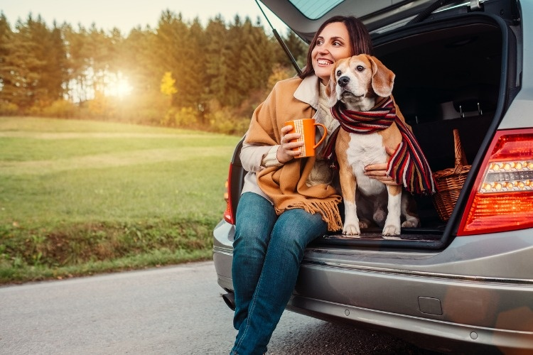 woman-and-dog-with-shawls-sits-together-in-car-trunk-on-autumn-road-picture-id825082276