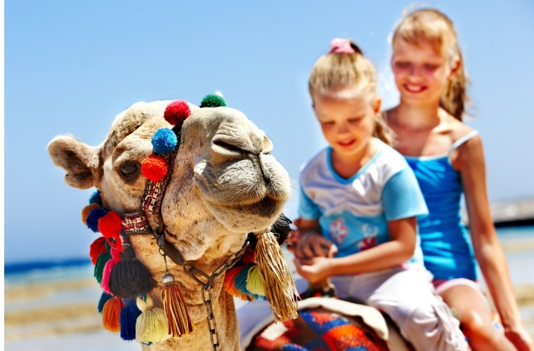 two-girls-riding-a-tourist-camel-on-a-beach-in-egypt-picture-id178761437