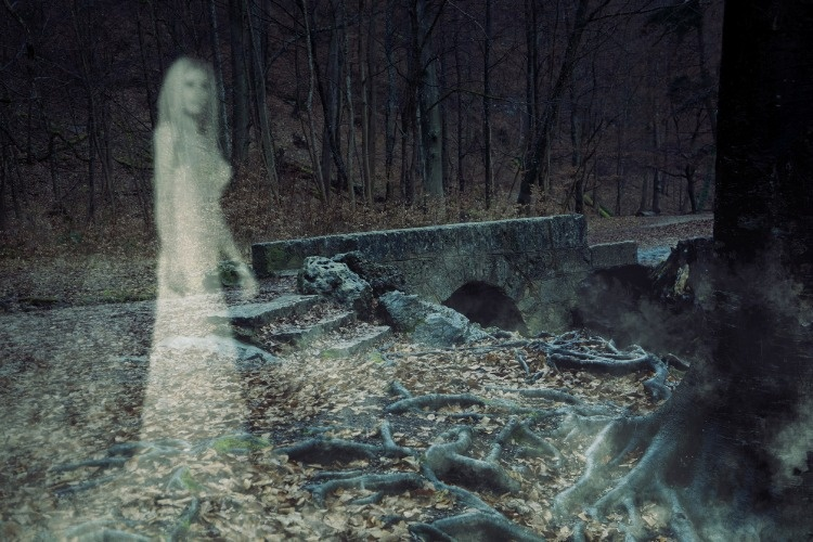 ghost-woman-in-forest-picture-id624085850_01