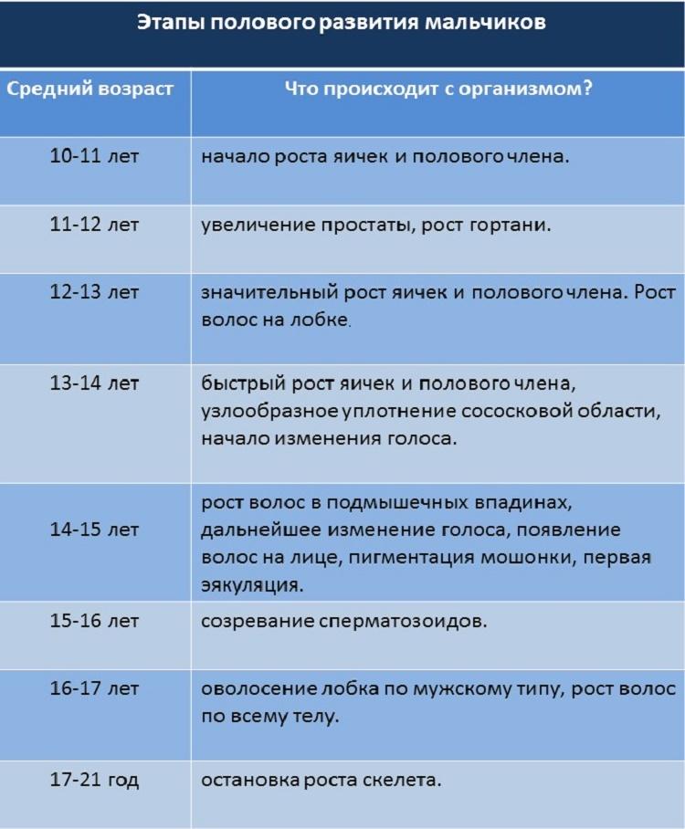 polovoye_razvitiye_boys