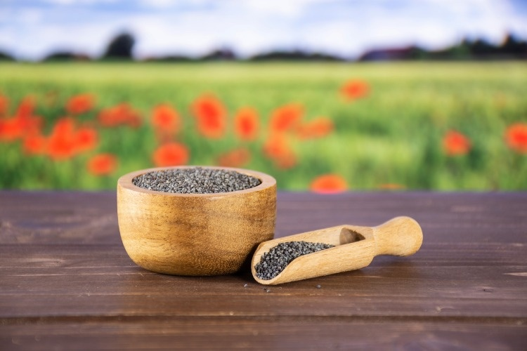 czech-blue-poppy-seeds-with-red-poppy-field-in-background-picture-id1067854800_01